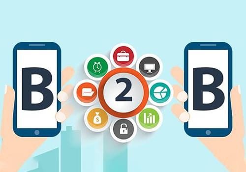 B2B Portal Development Company from Scratch