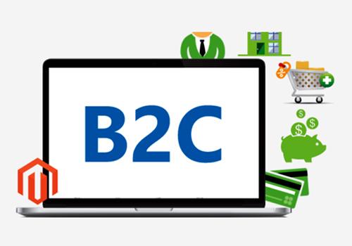 Platform-Based B2C Portal Development Agency